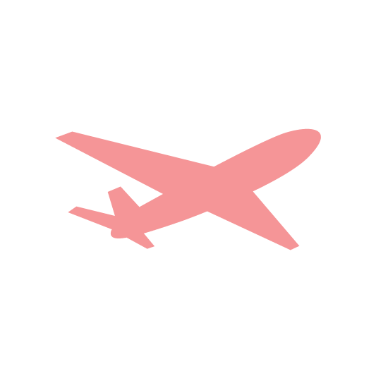 plane Icon for gastronomer